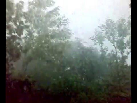 Гроза: сильный дождь и ветер (видео)