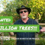 250 миллионов деревьев посажено - шаг к остановке изменения климата?