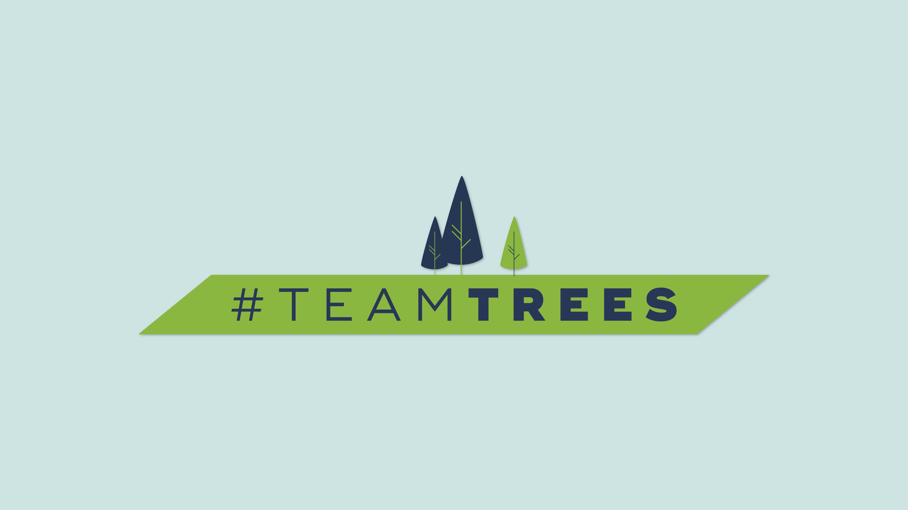 #TeamTrees: 20 миллионов новых деревьев для борьбы с изменениями климата